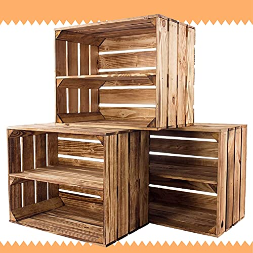 Vintage-Möbel24 3er Set Obstkisten mit Zwischenbrett – geflammt – Holzkisten als...