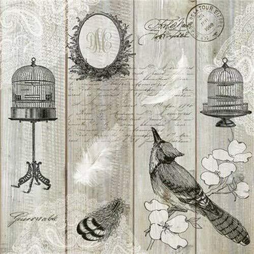 20 Servietten Vintage Vögel und Käfige auf Holzpaneele im Vintage Stil für...