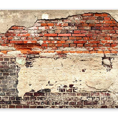 murando - XXL Fototapete 500x280 cm - Größe Format - Vlies Tapete - Moderne...