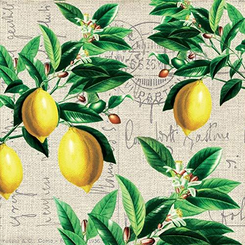 Servietten (2er Set / 40Stück) 3-lagig 33x33cm Zitronen Zweige mit Blüten Vintage...